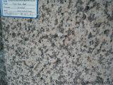 Het oppoetsen van de Natuurlijke Grijze Plak van het Graniet voor Countertop/Muur/Tegel