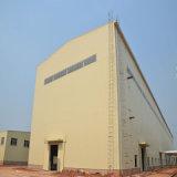 Preiswertes Preis-große Überspannungs-Lager-aufbauende Stahlkonstruktion