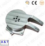 Pezzi meccanici dell'alluminio di precisione di CNC/acciaio inossidabile d'ottone//