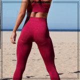 Il corpo che modella l'usura di forma fisica di yoga spinge verso l'alto gli abiti sportivi per le signore