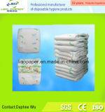 Constructeurs de couches-culottes de Quanzhou