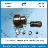 Heißer Verkaufs-direkter Antrieb-Pumpen-Teil-Rückschlagventil-Wasserstrahlzus