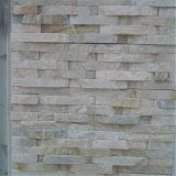 외부 벽 벽돌 문화적인 돌