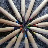Ensemble à crayons couleur enfants de 3,5 pouces en bois