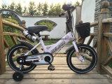 Bicicleta agradável Sr-Kb102W das crianças dos olhares