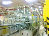 Bottling Line / Bottling Machine / Beer Line (3, 000 ~ 50, 000BPH)