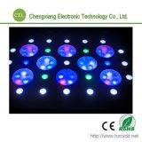 315W het Lichte Koraalrif Aquaium Fish Tank Lighting van LED