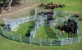 Гальванизированная овальная стальная загородка фермы панели для поголовья