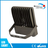 IP65 LED Floodlight 100W 110lm / W avec Osaram Meanwell Chip