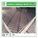 Dynea 21mm最初Class Eucalyptus Core Shuttering Plywood