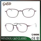 고품질 Ultem 호리호리한 스테인리스 3305를 가진 플라스틱 Eyewear 안경알 광학 프레임