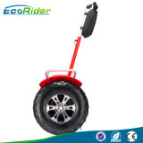 72V Samsung Battery 2 Wheels Self Balancing Scooter Electric Chariot