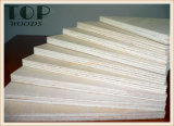 """4*8"""" 6/9/15/12/18mm Carb/Enculytus Álamo grado comercial básico para los muebles de madera contrachapada"""