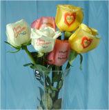 Impressora da flor de Digitas mini (UN-FL-Mn103)