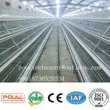 Il pollame automatico del rifornimento della fabbrica della Cina mette in gabbia per il pollo della pollastra