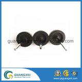 De magnetische Magneet van het Ferriet van de Assemblage met Rb-80