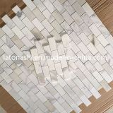 Pietra all'ingrosso del mosaico di Bianco Carrara, mattonelle di mosaico Polished del marmo bianco