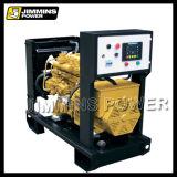 Geöffneter u. leiser Ricardo-Motor-elektrische Dieselgenerator-Set-Preisliste für Energien-Energie (schalldichter u. containerisierter Typ)