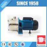 1 Zoll-Edelstahl-Strahlen-Serien-Pumpe für Verkauf