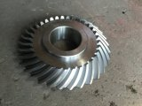 Forging Driving Gear Wheel with Finished Usinagem