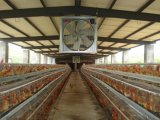 Extractor del invernadero del montaje del ventilador del material y de la pared de la lámina del metal