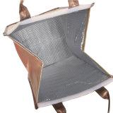 Picknick-Beutel-Organisatortote-Kühlvorrichtung-Beutel (YYCB038)