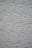Tessuto nuovo del merletto del poliestere di disegno con il reticolo elegante del ricamo per l'indumento e la tessile domestica