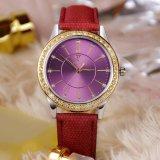361 het mooie Horloge Van de Bedrijfs luxe van het Horloge van Vrouwen van het Kwarts voor Dame