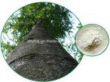 自然なYohimbeの吠え声のエキスYohimbine Hci 8%~98%