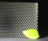 Âme en nid d'abeilles de PC