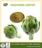 Extrait d'artichaut avec la qualité et meilleur prix de Kingherbs