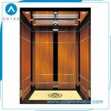 직업적인 제조를 가진 홈에 의하여 사용되는 소형 별장 엘리베이터