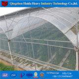 Solo Span Plástico invernadero túnel de verduras tomates/