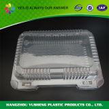 Contenitore di alimento di plastica di vendita caldo del commestibile con il coperchio