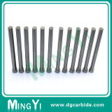 Perfurador Wear-Resistant do carboneto de tungstênio do produto novo para o molde
