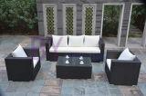 Da mobília ajustada do jardim do sofá do Rattan do PE sofá ao ar livre