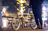 электрический Bike 250W с ассистентской силой