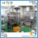 Voller automatischer Saft-Warmeinfüllen-Produktionszweig