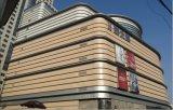 La Chine Façade murs rideaux métalliques personnalisées plafonds panneau solide en aluminium
