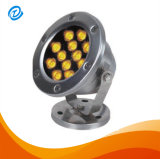 AC/DC 12V 24V 24W LED Swimmingpool-Licht IP68
