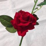 가정 결혼식 훈장 부속품을%s 가짜 꽃이 실제적인 접촉에 의하여 실크 인공적인 로즈 꽃이 핀다