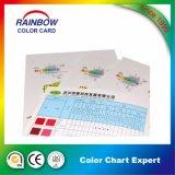 Tableau de couleur de conception personnalisée avec teinte de couleur de peinture