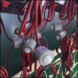 Plástico ahuecado del interruptor del sensor de movimiento de PIR