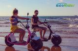 2017 حارّ [هرلي] [سكوتر] درّاجة ناريّة كهربائيّة كثّ مكشوف [1000و] [40كم] [ك] [ستكك]