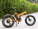 48V 750W de alto par de neumáticos de la grasa de la nieve Electric Beach Bike