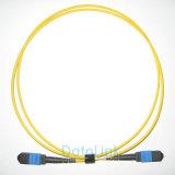 A MPO-MPO Sm patch cord 12núcleos