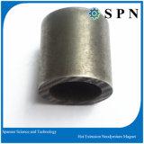 De Hete Gedrukte Magneet van het neodymium/de Permanente Hete Magneet van de Uitdrijving NdFeB