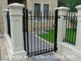 Späteste Entwurfs-bearbeitetes Eisen-Türen