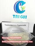 Provare il testoterone Cypionate della CYP 58-20-8 polveri grezze di configurazione del muscolo