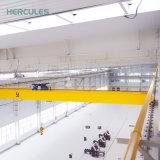 Одиночный мостовой кран надземного крана прогона 5 тонн для сбывания